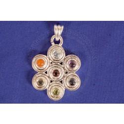 Sead Of Life Chakra Pendant